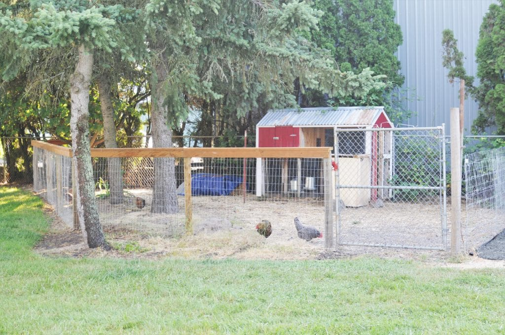 Wide view of a chicken coop and fenced in run.