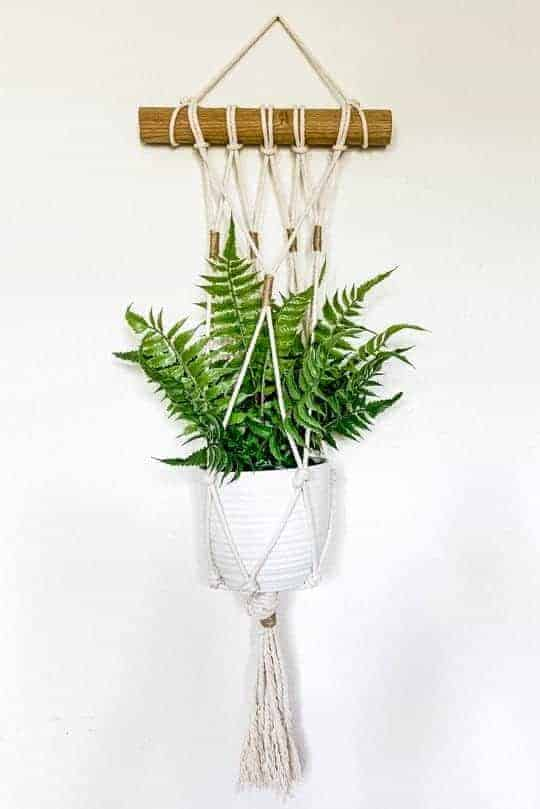 DIY macrame plant hanger on a white wall.