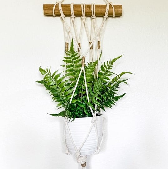 Macrame hanging plant holder from a dowel.