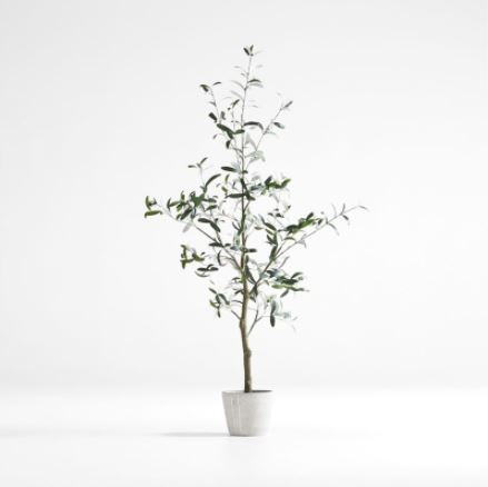Small faux olive tree in white pot against a grey background.